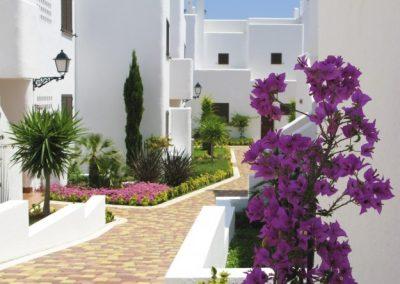 HOUSE IN SAN JUAN DE LOS TERREROS - FIND ME A PLACE IN SPAIN (1)