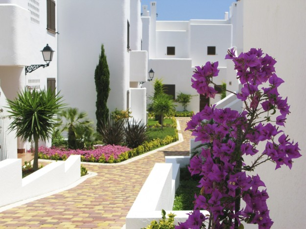 FLAT FOR SALE SAN JUAN DE LOS TERREROS